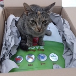 Alissa hat das Paket sofort in Beschlag genommen :-)