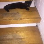 Versteck hinter der Treppe