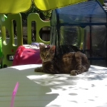 Alissa im Garten